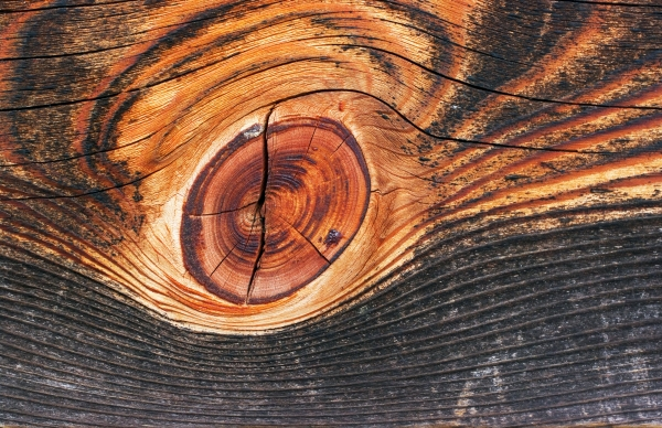 Wood_Pillar_kobe_peq